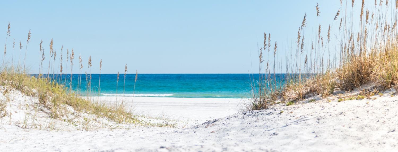 Live in Pensacola FL