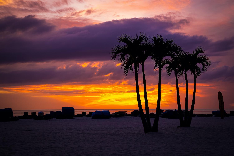 Life in Palm Coast
